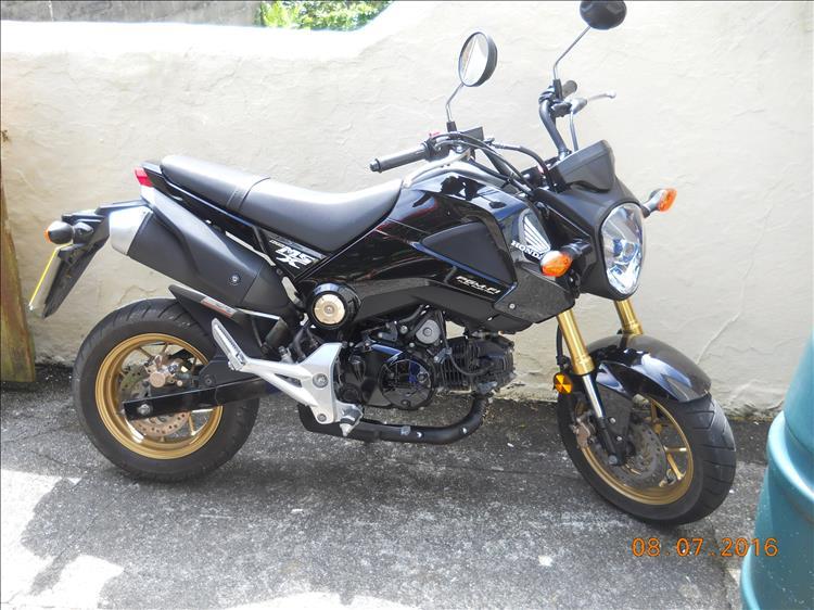 Honda Msx [Grom]