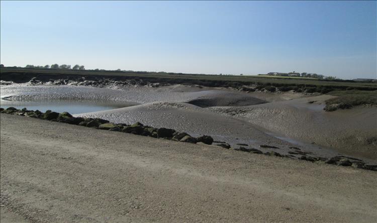 mudflats near Morecambe bay