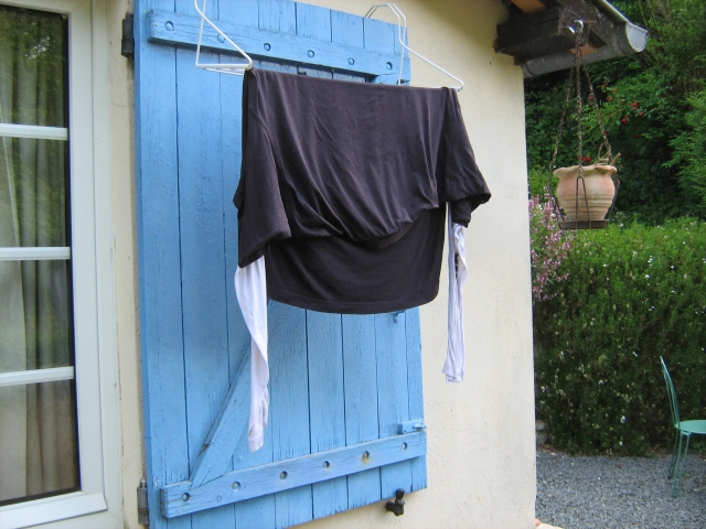 a long sleeved tshirt drying on a french window shutter