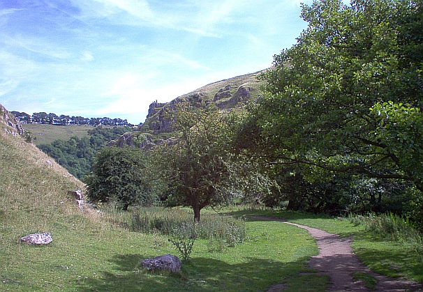 Wolfscoat dale, a path running through trees and grass in a lush valley
