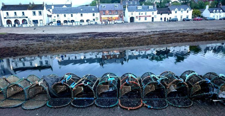 Lobster pots in a line on the harbour wall with the white houses, pubs and shops across the water