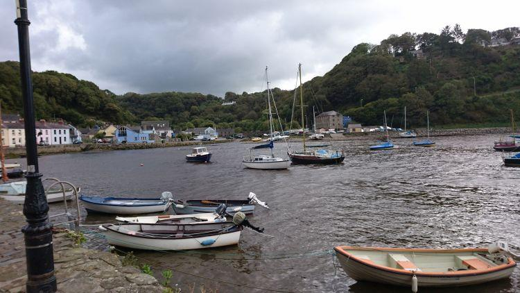The harbour has steep tree lined hillsides around and a few pleasant houses at Fishguard harbour