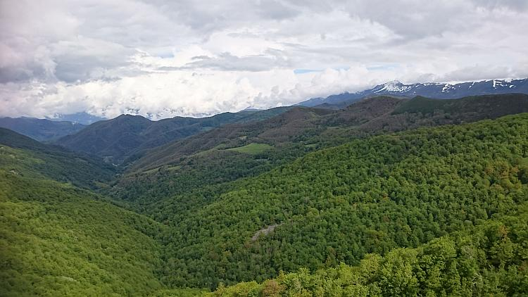 A vast enormous valley is filled for miles with trees, the mountain tops in the distance are snow capped