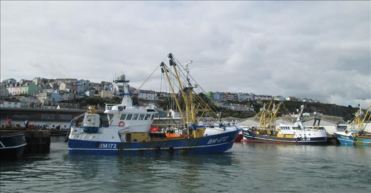 As we leave the harbour on the ferry we see the fishing trawlers in Brixham