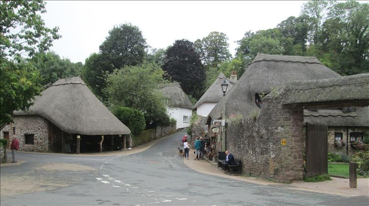 thatched buildings, trees and quaint streets in Cockington