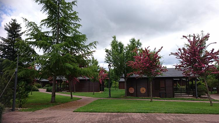 A selection of wood lodges amidst trees, shrubs and lawns, quite pretty
