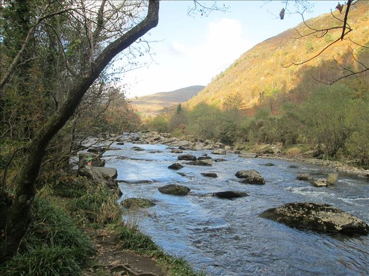 Trees, the river with rocks and boulders, steep valley sides, contrast and sunlight all in a welsh setting