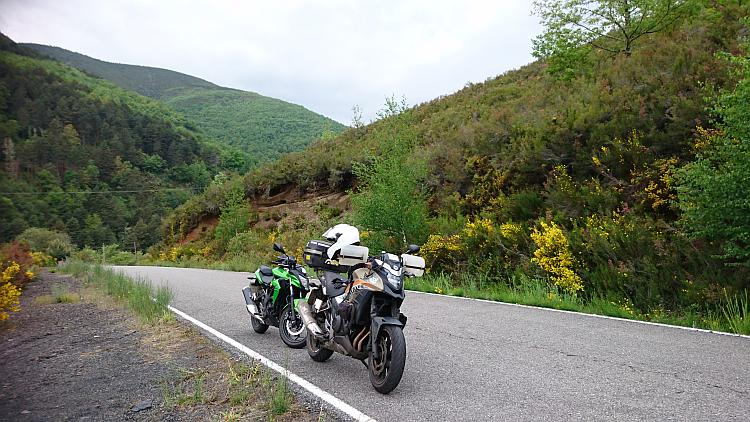 The 2 motorcycles on a road surrounded by thick green bushes, grasses, trees and scrub