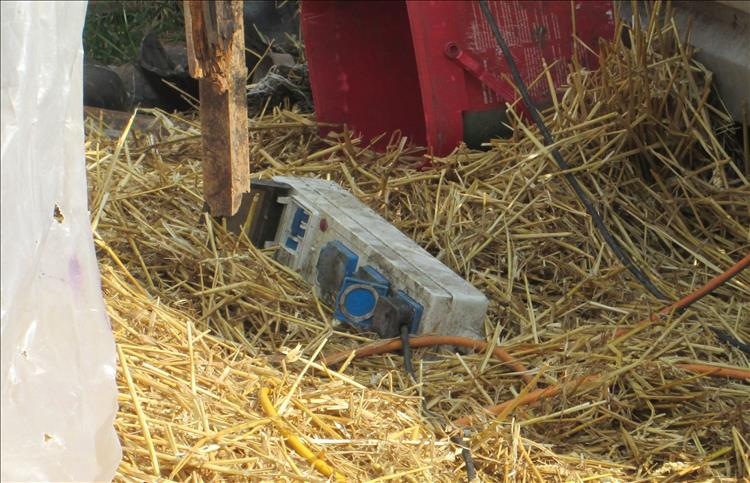 A mains adapter on the straw in a poly tunnel at Coity Bach