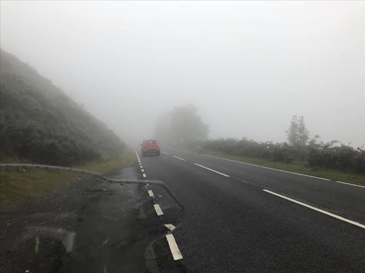 Taken from the roadside very misty and wet hillside and verges in Wales