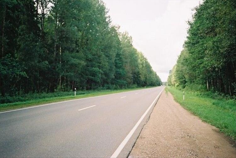 A long 2 lane road stretches off into the distance lined by lush green trees
