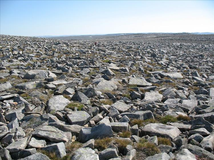 A whole vast plain of angular rocks and boulders making walking very difficult indeed