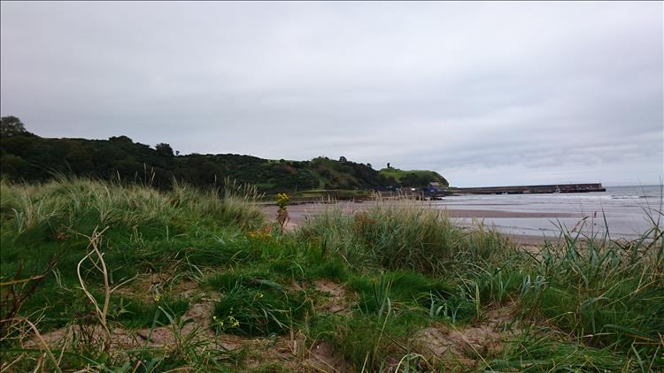 Outcrops of land, grassy dunes and the presently calm waters of Waterfoot beach
