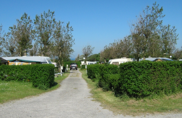 caravans and campervans behind hedgerows at ambleteuse campsite