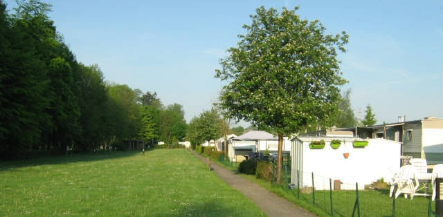 bastogne campsite showing trees, the grass covered field and static caravans