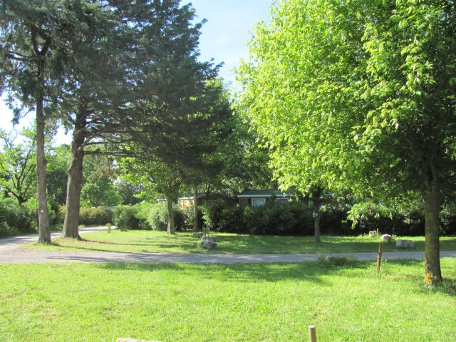 trees, grass and sunshine at the campsite municipal la bastide near nimes