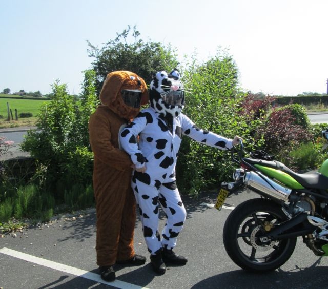 2 bikers dressed as dogs pretending to breed on a hot sunny day in westhoughton