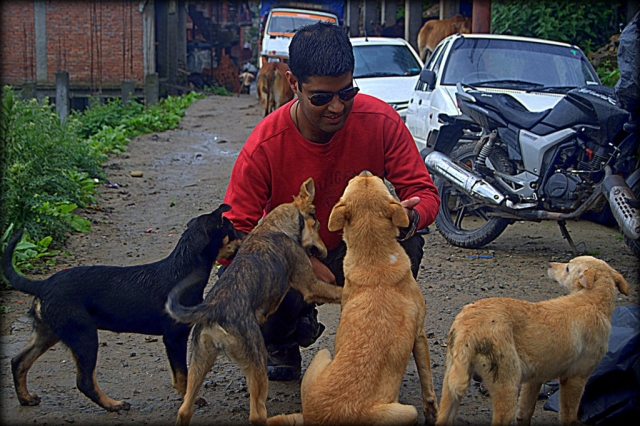 an indan man petting 4 dogs with a motorcycle in the background