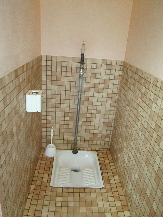 the french turc toilet, just the hole and somewhere to squat