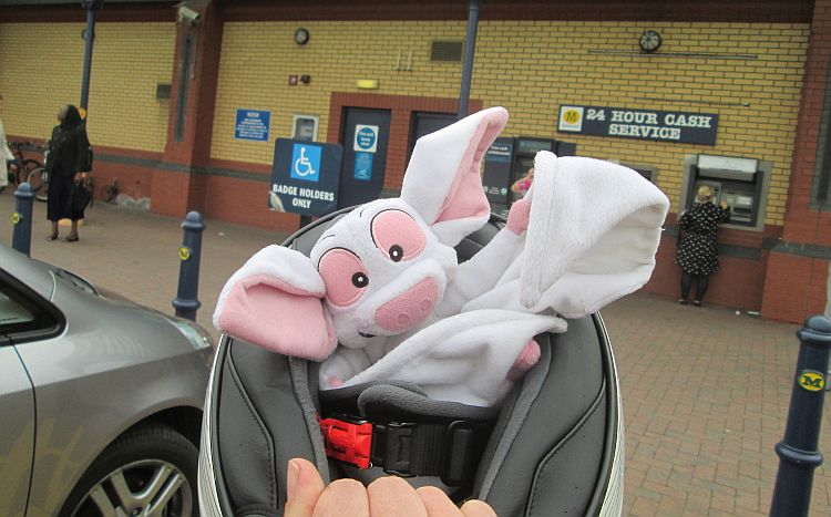 batty the toy bat inside a helmet looking happy pointing toward morrisons