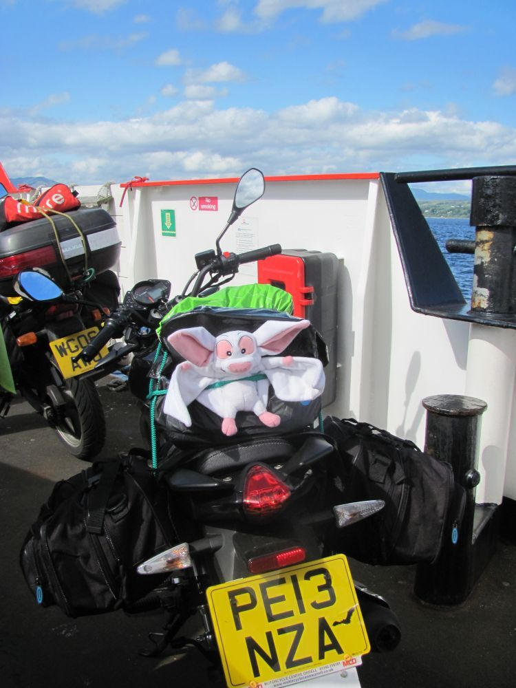betty the toy bat on sharon's motorcycle on the ferry across the firth of clyde