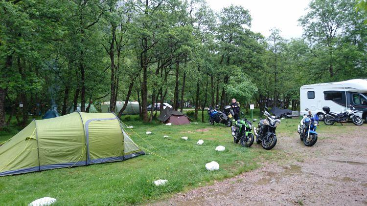 Motorcycles, tents and campervans amidst the trees at the campsite