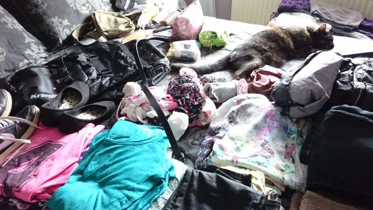 Clothes, shoes, bags, make up and Sharons cat on the bed