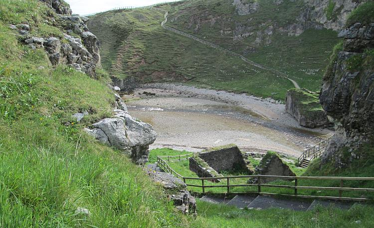 Steps cut into the steep hillside of the cove lead down into the cove's bottom